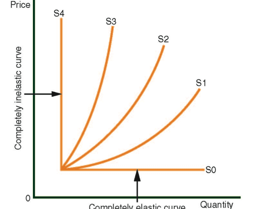 Elasticity of the Supply and Demand Curves