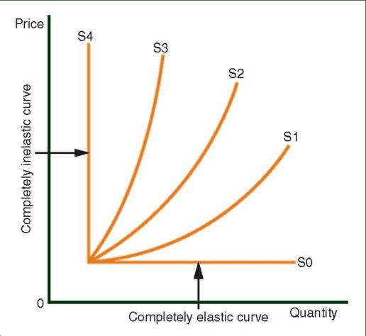 La elasticidad de la oferta y demanda Curves