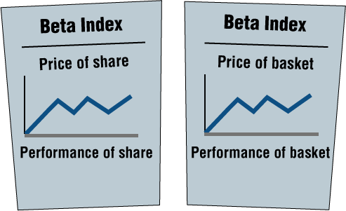 Describing Behavior of Shares Using the β (beta) Index
